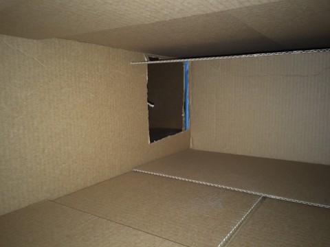 Inside_Cat_Houses
